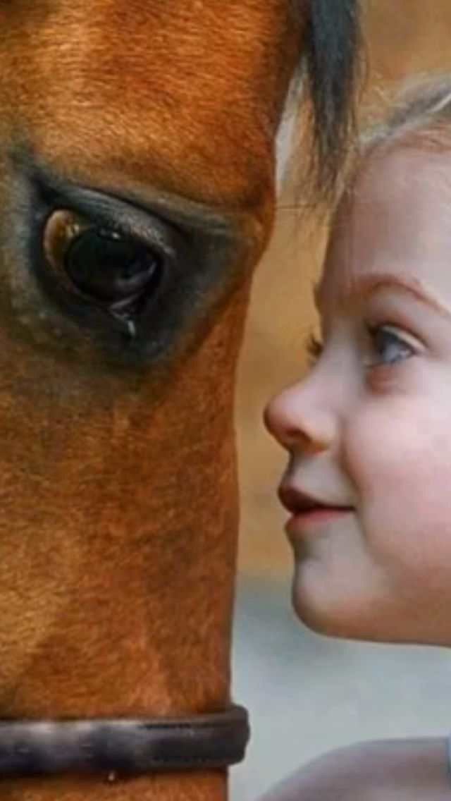 Little girl looking in the eyes of her horse, face to face close up. Stunning horse photography. Look at those kind eyes on the horse and the sweet ones on the girl!