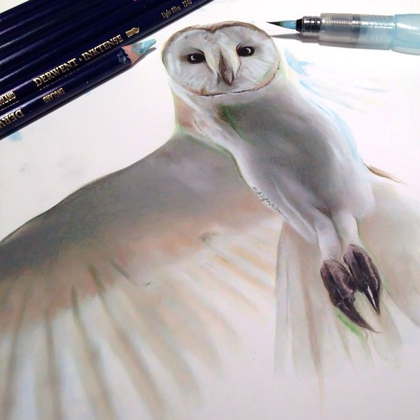 Realistic Animal Drawings Surrounded By The Tools Used To Create ThemfullycoolpixThe Art Of DrawingArt And Animalanimal Famous