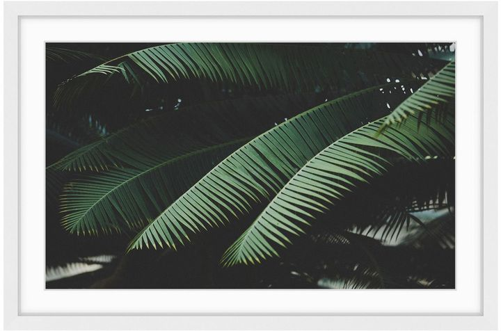 Marmont Hill Night in the Tropics (Framed Print)