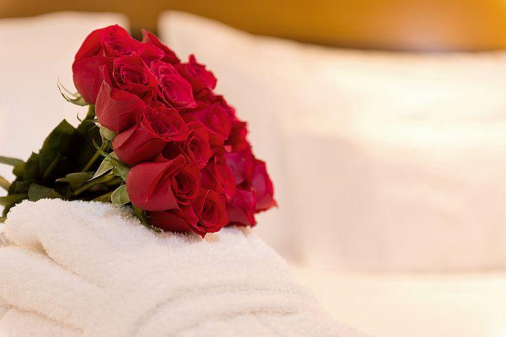 Plan noche de bodas Hotel Dann Norte Bogotá