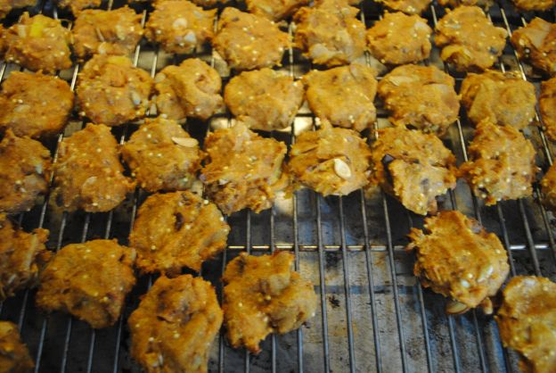 two-ingredient goat cookies, a simple treat for goats, chickens or dogs