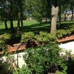 """Vue de la chambre d'hôtes sur le jardin et l'orangerie du Chateau de Versailles  B&B """"Villa de la pièce d'eau des suisses"""""""