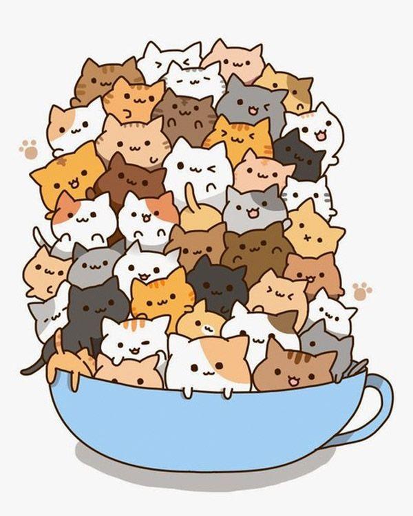 Taza de gatos.
