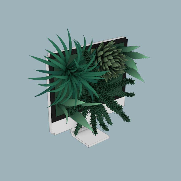 Animator Sasha Katz Explores a Symbiotic Relationship Between Plants and Technology