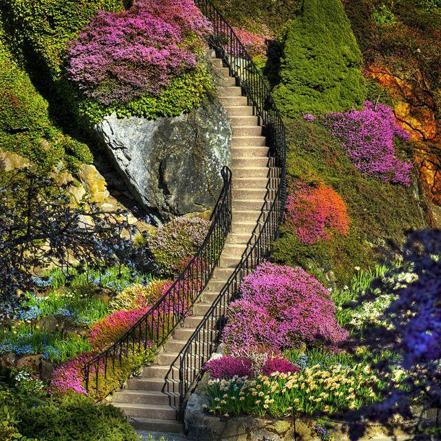 Butchart Gardens, British Columbia. GORGEOUS!