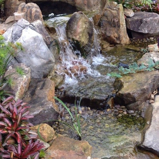 1000 images about ponds to ponder on pinterest backyard for Build a koi pond yourself
