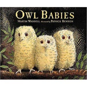 One of my favorite board books.  So sweet and reassuring.