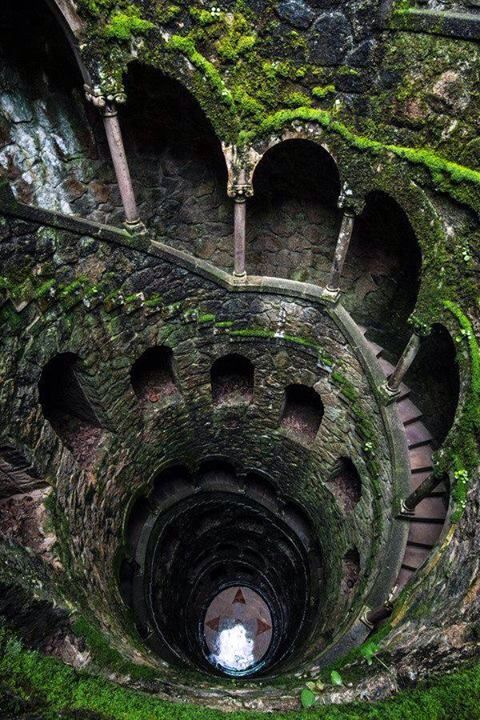 Overgrown Spiral Stairs in Sintra, Portugal