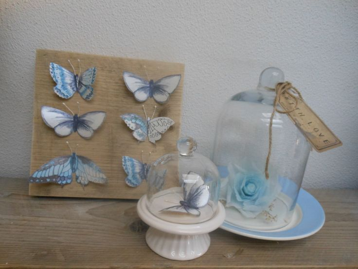 Een stilleven met de vlinders op het hout, een vlinder onder de stolp en een zelfgemaakte bloem van crêpepapier.