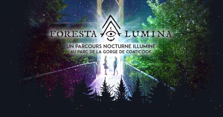 Axée sur la mise en lumière du Parc, de ses beautés et de ses mystères, Foresta Lumina est un parcours nocturne illuminé créé pour l'un des sentiers les plus parcourus au Québec et célèbre pour détenir le plus long pont suspendu en Amérique du Nord.