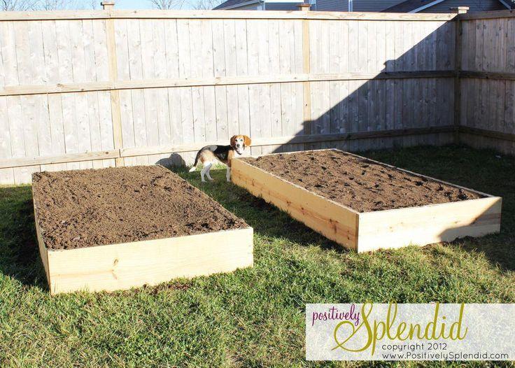 Fast Food Interview Tips #GardeningTipsColorado #GardeningTipsInHindiLanguage