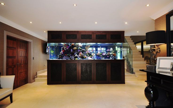 Proper care of fish is one of the most important tasks. Avail the service free of charge