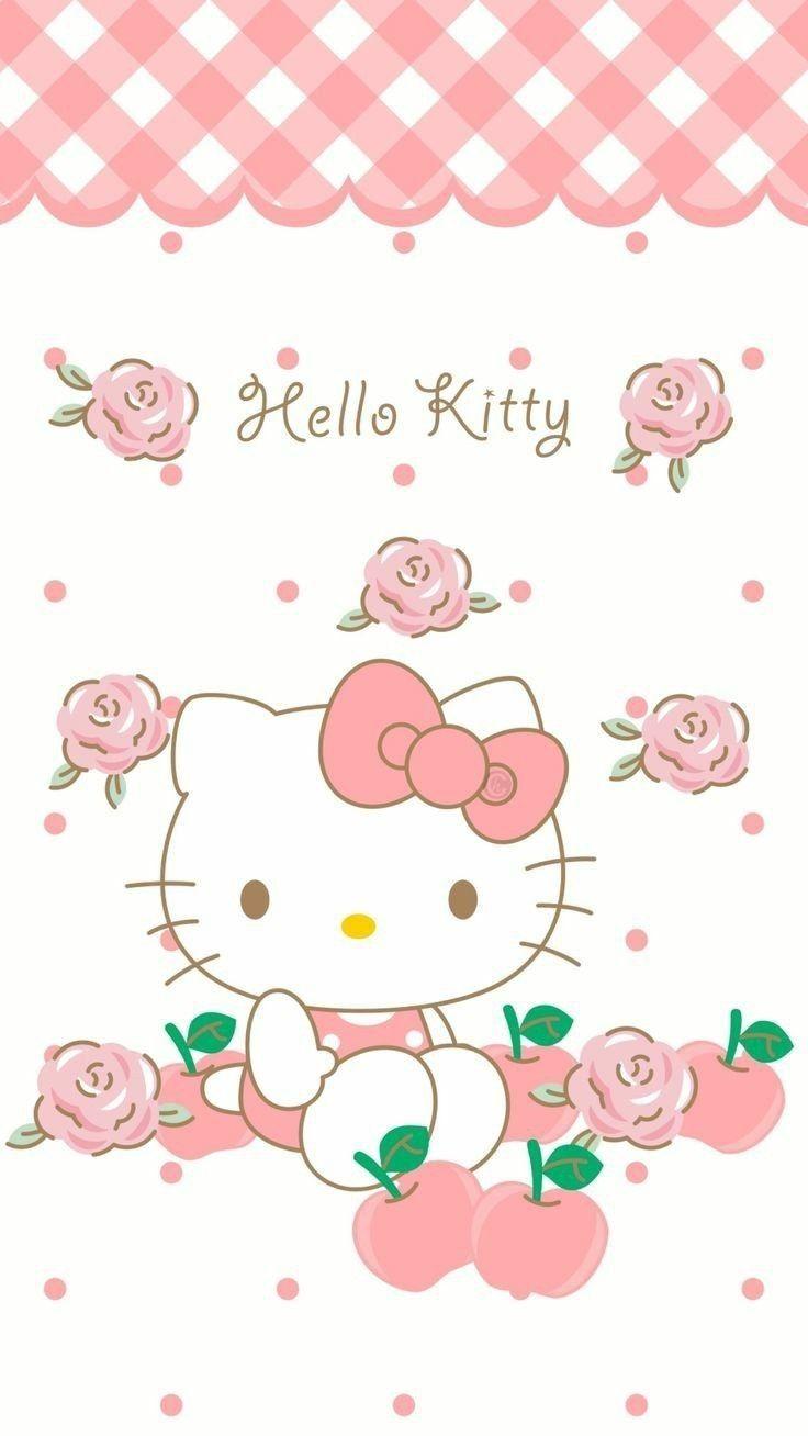 Pin By صورة و كلمة On Hello Kitty Hello Kitty Pictures Hello Kitty Backgrounds Hello Kitty Drawing