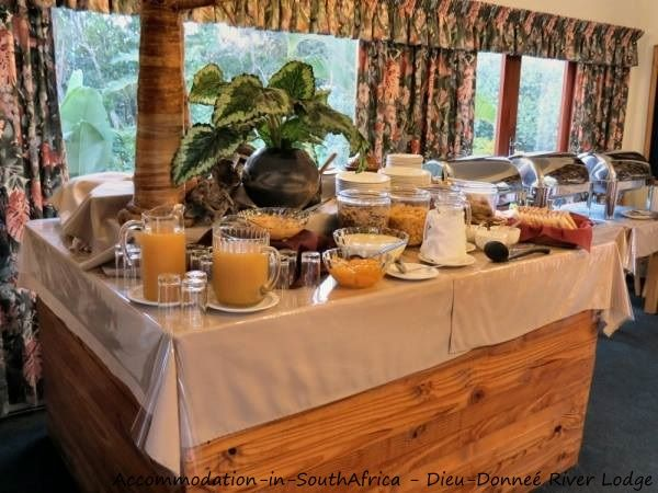 Bed and breakfast at Dieu-Donneé River Lodge. http://www.accommodation-in-southafrica.co.za/KwaZuluNatal/PortShepstone/DieuDonnee.aspx