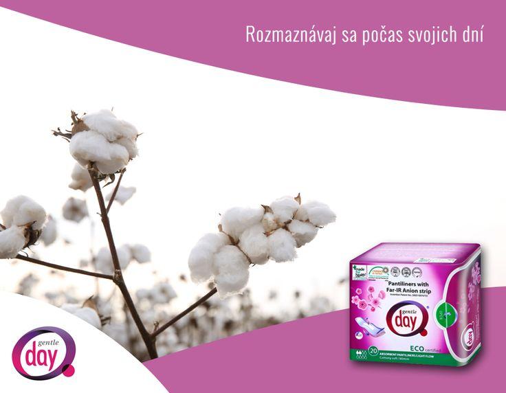 Bavlna patrí k najjemnejším materiálom na svete. Aj vďaka nej sú vložky Gentle Day priedušné a nedráždia tvoju pokožku. http://gentle-day.sk/#produkty