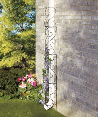 Metal Downspout Trellises