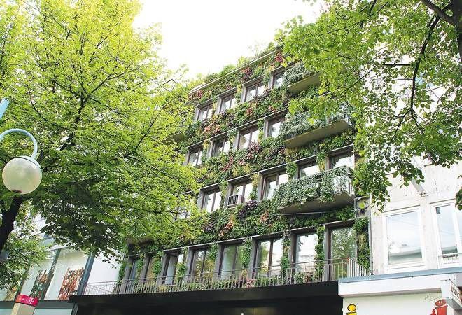 https://www.rnz.de/nachrichten/mannheim_artikel,-Mannheim-Mannheim-foerdert-gruenere-Fassaden-_arid,196642.html
