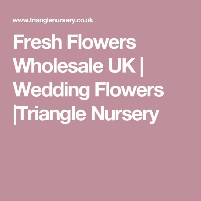 Fresh Flowers Wholesale UK | Wedding Flowers |Triangle Nursery