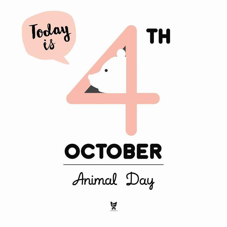 Today is the Animal Day!  Z okazji tego wspaniałego święta Pan Lis zdradzi Wam, że zbliżające się wielkimi krokami otwarcie jego nowego sklepu nastąpi w tym miesiącu, a najprawdopodobniej w następnym tygodniu! W dodatku, razem z Lisem, swoje gniazdo otworzy pewien piękny Wróbel od Magdy @znikad.  Stay tuned! :-) #4 #ukochaj #swojegoZwierza #panlis
