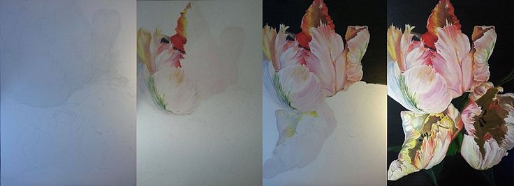 Process Parrot tulipans. My art paitings.