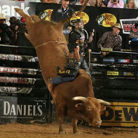 462 Best Cowboys Amp Cowgirls Rodeo Images On Pinterest