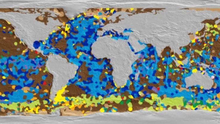 Crean el primer mapa digital del fondo del océano