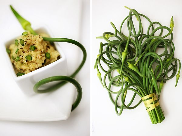 White Bean Garlic Scapes Dip. Made this to go with my lunch - a good ...