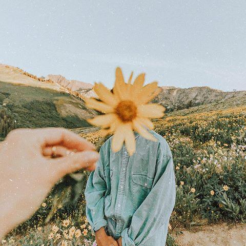 alex (Alex Gowon) • Instagram photos and videos