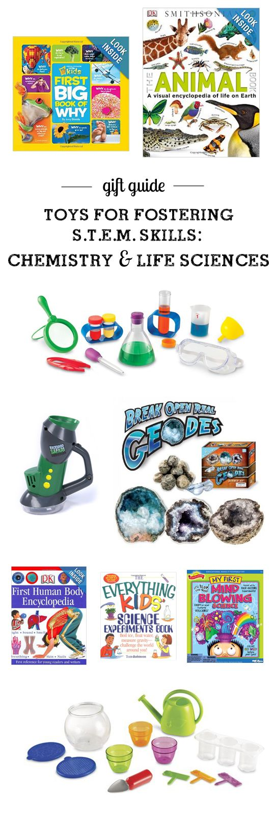 This is just one section from a great S.T.E.M. (Science, Technology, Engineering, Math) gift guide