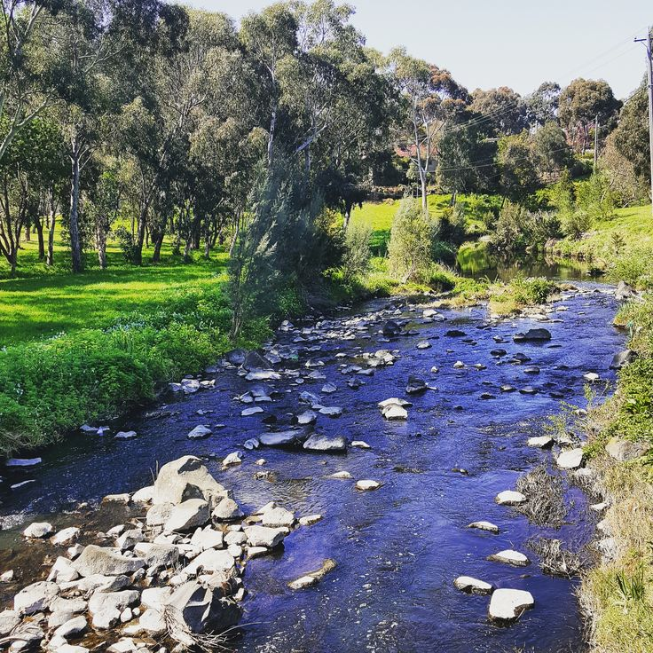 merri creek trail coburg vic melbourne australia. Black Bedroom Furniture Sets. Home Design Ideas