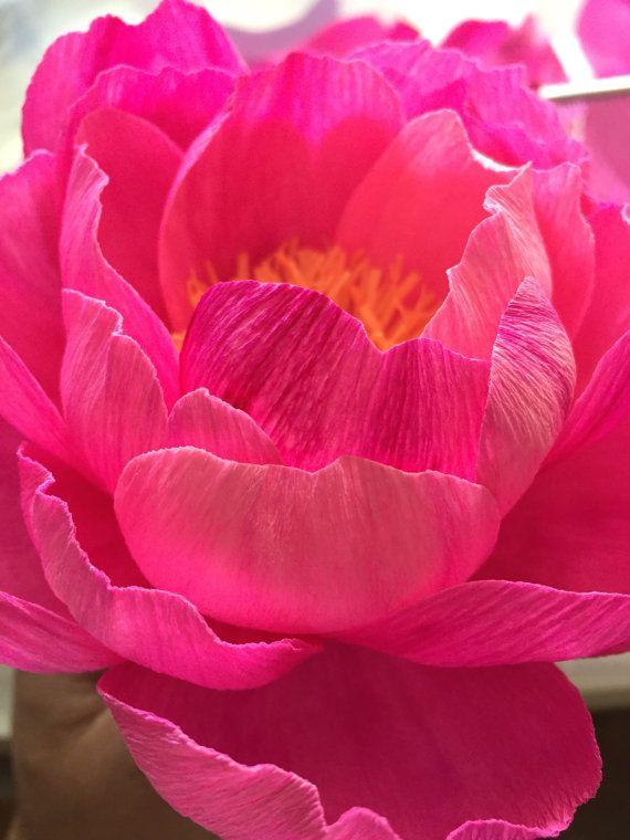 Fiore di carta crespa  corallo fascino peonia  Handmade