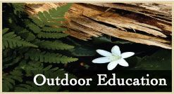 Classes in Outdoor Education near Lake Arrowhead  Pali Institute - Katie works here!