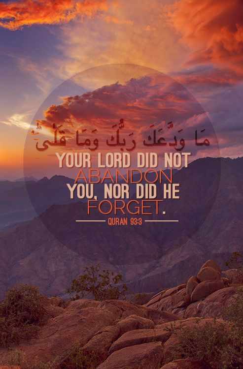 The Tumblrer — Quranic verse 93:3 of Surah Ad-Dhuha                                                                                                                                                      More