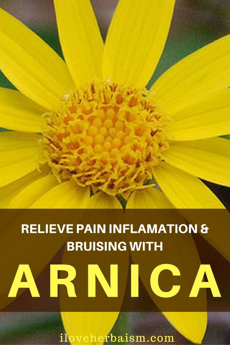 The name 'Arnica' probably drives from the Greek 'Anakis', meaning 'Lamb's Skin', due to the soft texture of the leaves. Arnica Montana is a natural remedy used for contusions, inflammation as well as swelling. Natural Arnica has actually proven useful in dealing with concussions, pre as well as post surgical healing, inflammation, inner hemorrhages and overuse injuries.