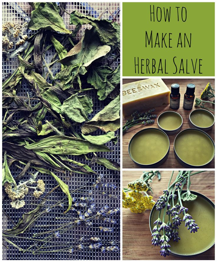 How to Make an Herbal Salve and a Mountain Rose Herbs Giveaway!