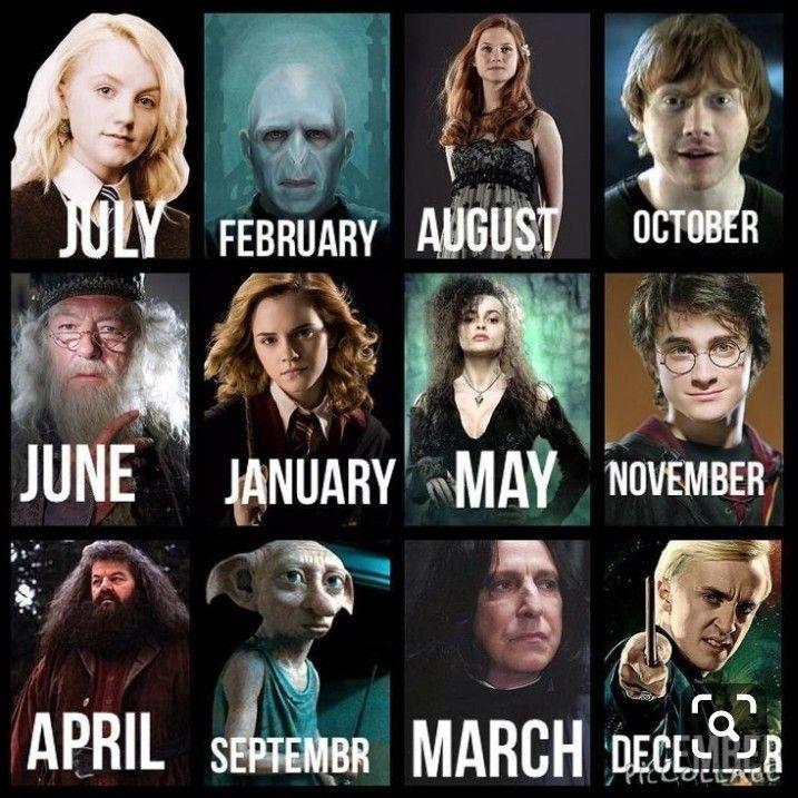 Januar Yesssssss Astrologie Date Astrologie Deutsch Astrologie Hauser Astrologie Sign Harry Potter Zodiac Harry Potter Film Harry Potter Memes Hilarious