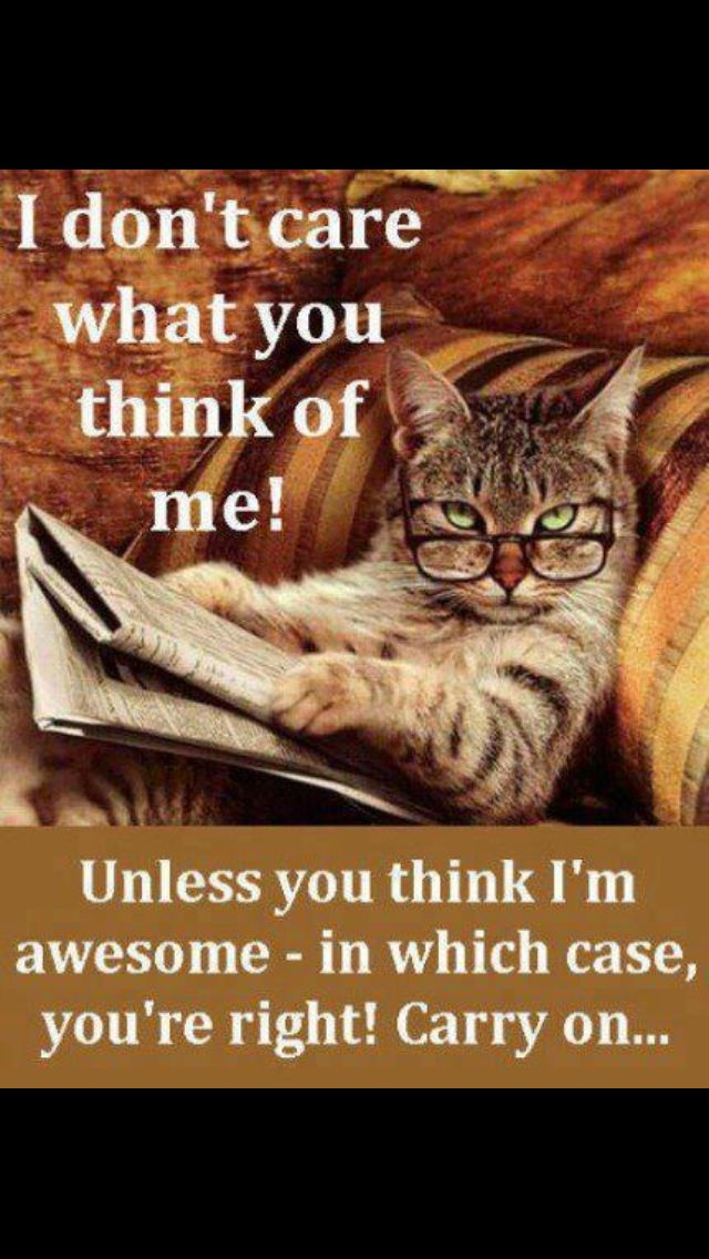 #funny #quotes #laugh hahahaha
