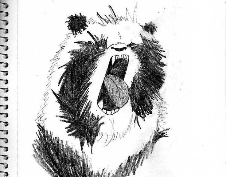 Angry Animals Google Search: Angry Animal Drawings - Google Search