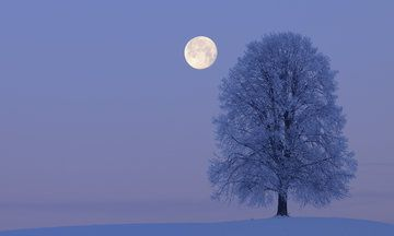The Gorgeous 'Snow Moon' You May Have Missed This Week