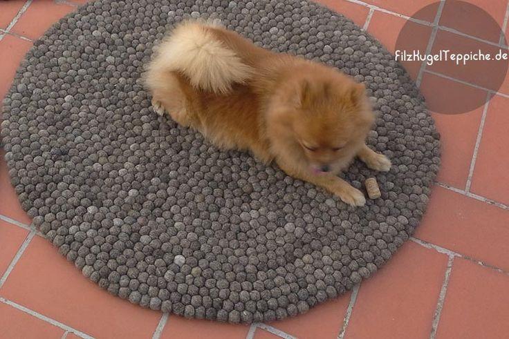 Perfektes Spot für das Essen... Hünde mögen Qualität :)  Diese Teppiche sind geeignet, im Häuser mit Tiere zu verwenden. Die FilzKugelTeppiche können sehr einfach gereinigt werden. Also keine Sorge! Bestellung: www.sukhi.de