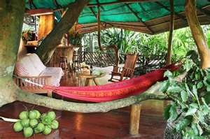 Inside another treehouse