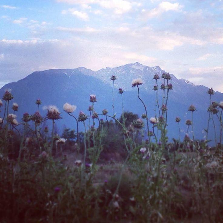 Olympus Mountain ,Pieria, #visit_pieria photo: Vaggelis Zamantzas