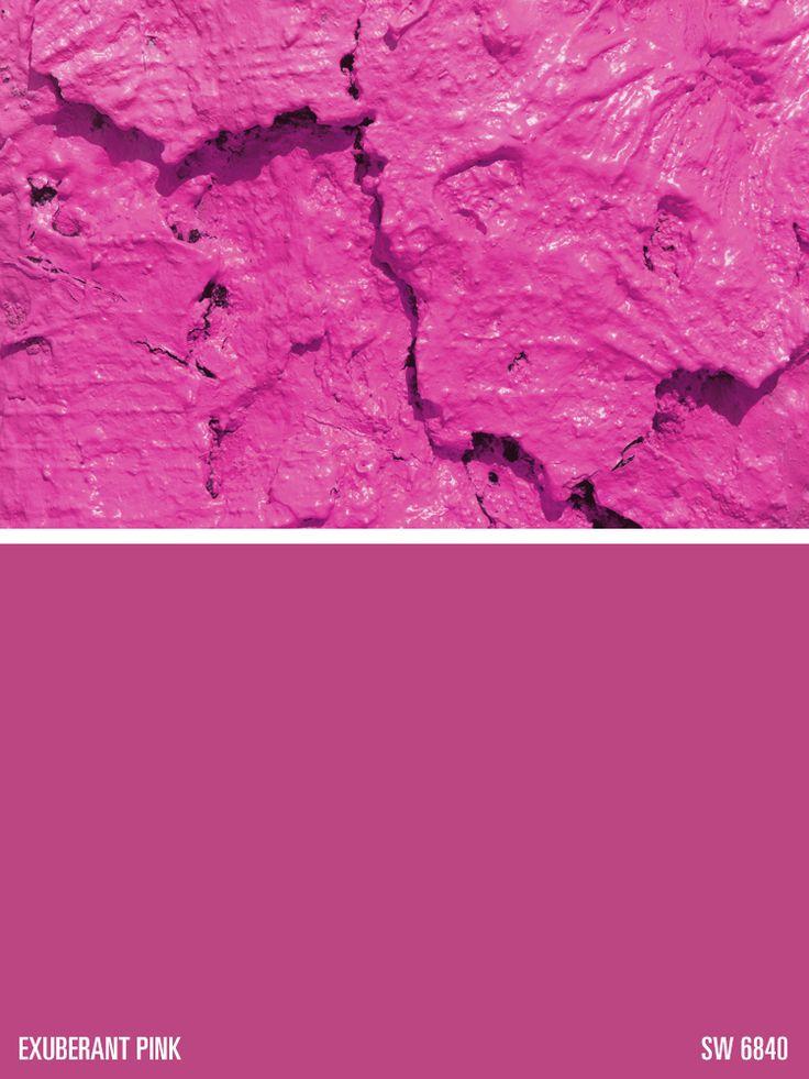 80 Best Paint Color Scheme Fuschia Pink From The Flirt