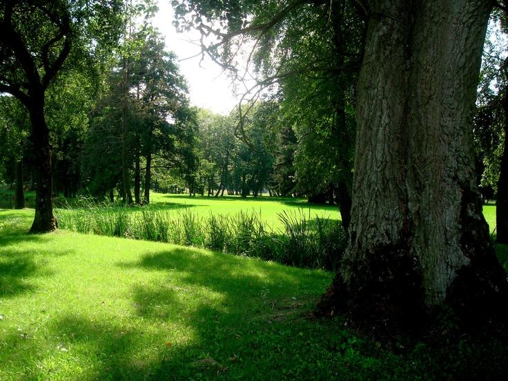 Strzembowo - park dworski