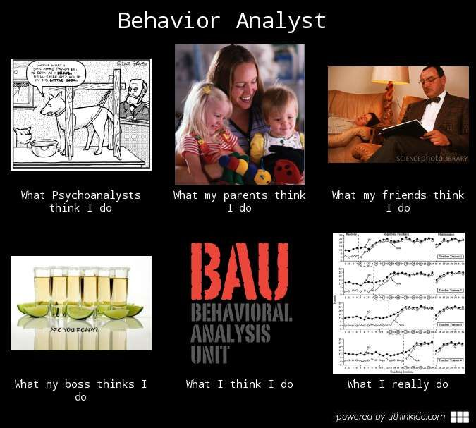 Behavior analyst, What people think I do, What I really do - uthinkido.com