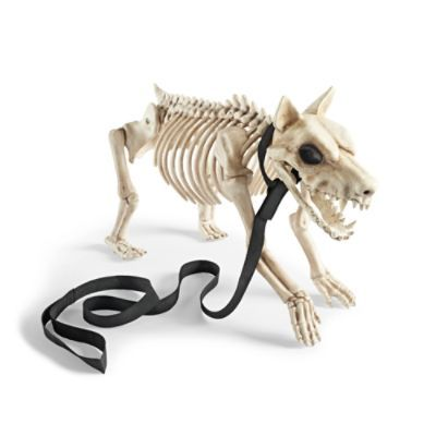 small skeleton dog halloween decorations and decor grandin road