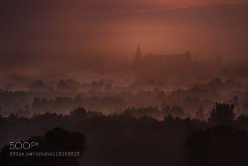 The Wawel Castle