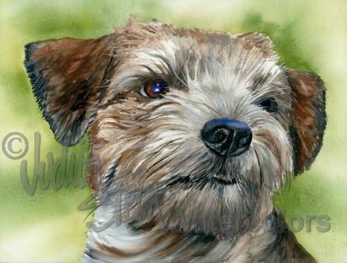 """Border Terriër, AKC Terrier, huisdier portret hond kunst, Giclee aquarel schilderen afdrukken, kunst aan de muur, Decor van het huis, """"op de grens"""" door Judith Stein door k9stein op Etsy https://www.etsy.com/nl/listing/90622615/border-terrier-akc-terrier-huisdier"""