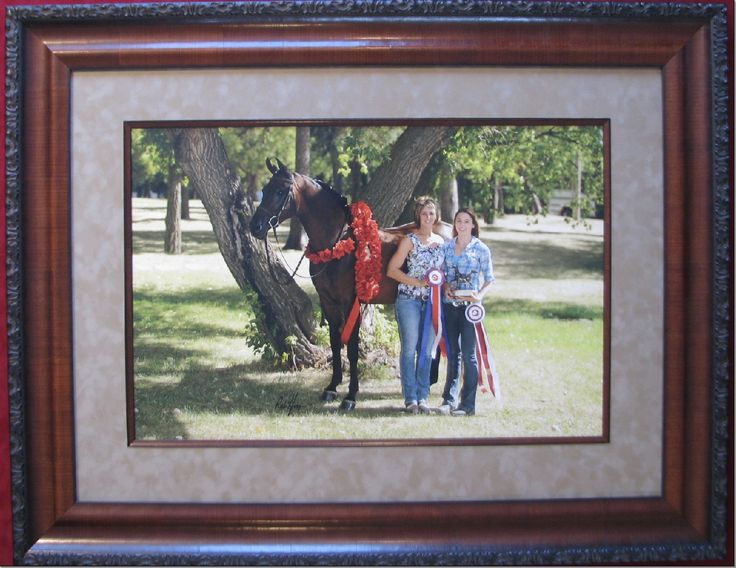 The job of a picture framer is to help you remember and enjoy your fondest memories and accomplishments.  www.walkerworks.ca