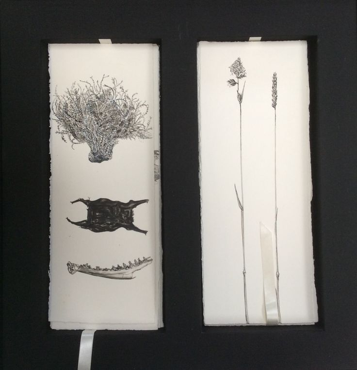52 drawings, cased loose leaf. Pen and ink. Louise Baker